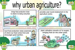 why urban ag2